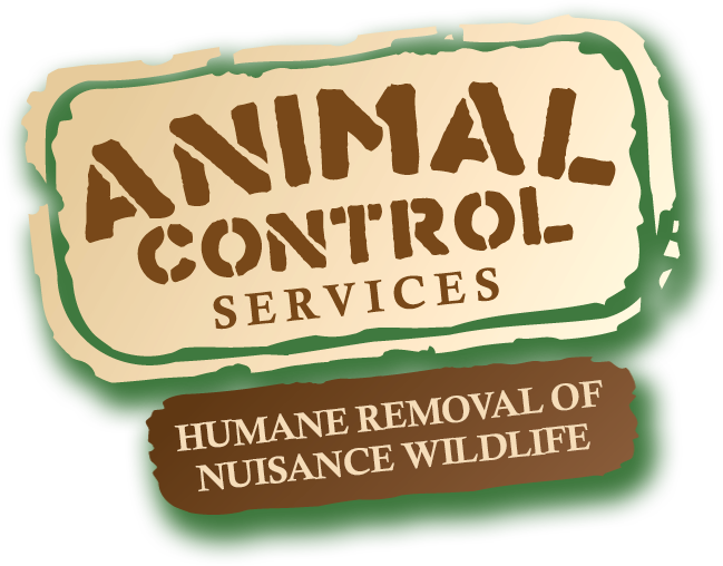 Animal Control Services, Inc.